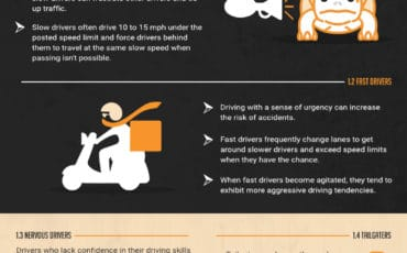 Which Type of Driver Are You? [infographic]